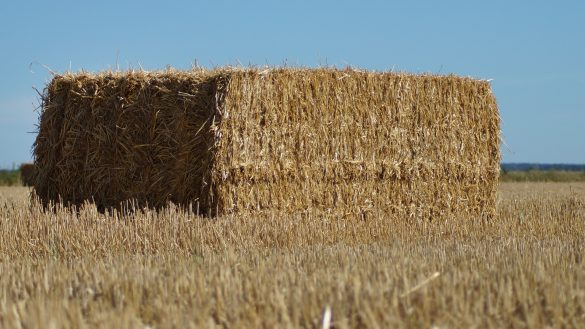 straw-bales-3686274_1920